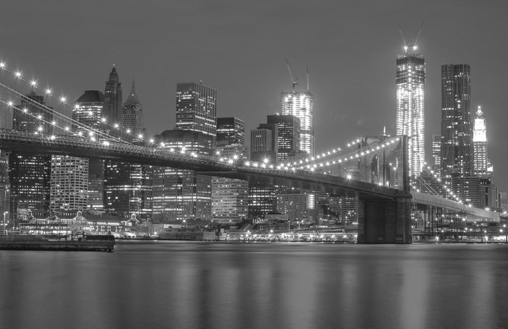 City Skyline and Bridge