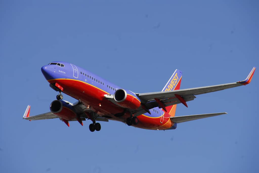 Cash Back or Frequent Flyer Miles Credit Card?