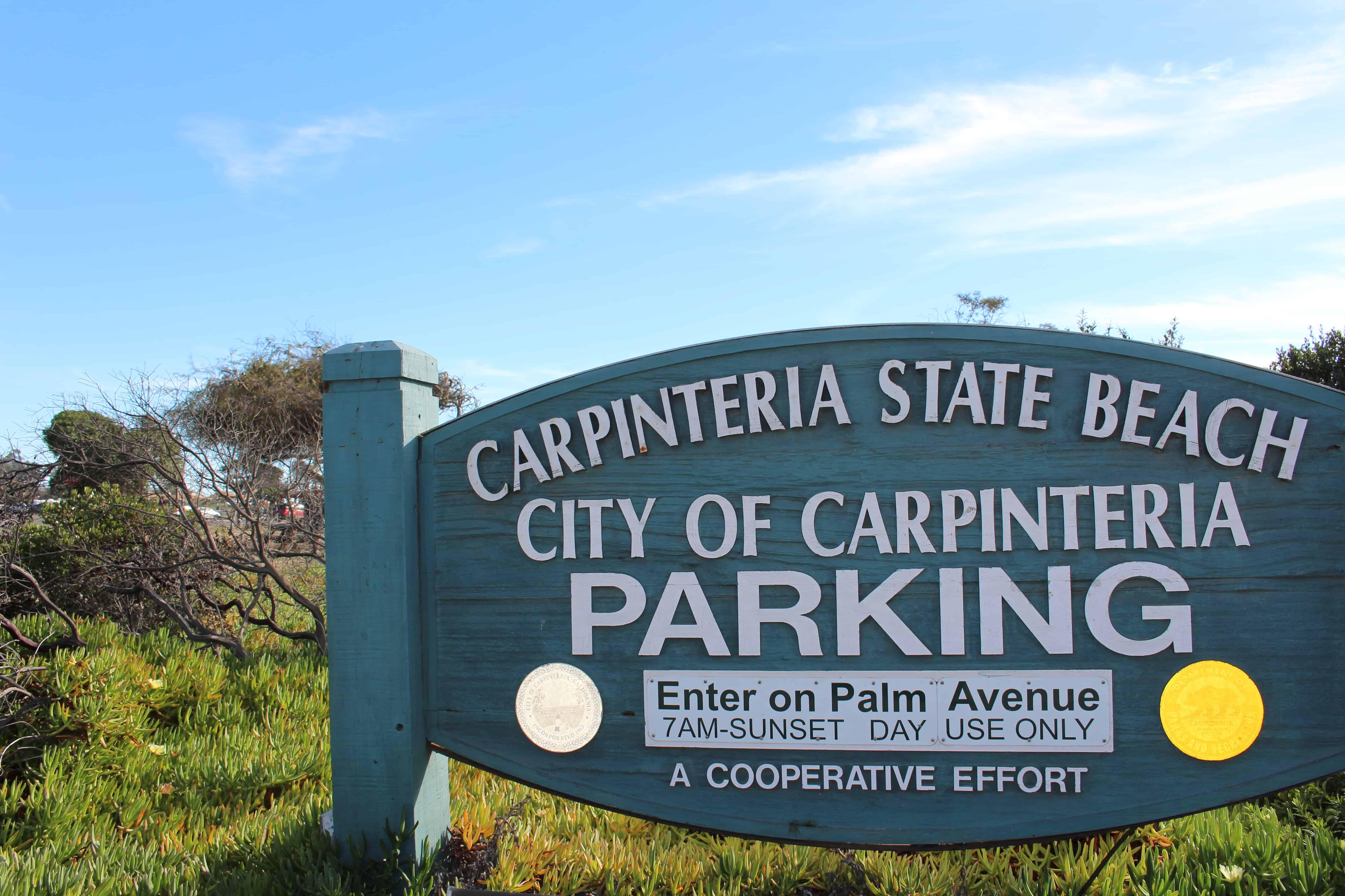 Carpinteria State Beach California