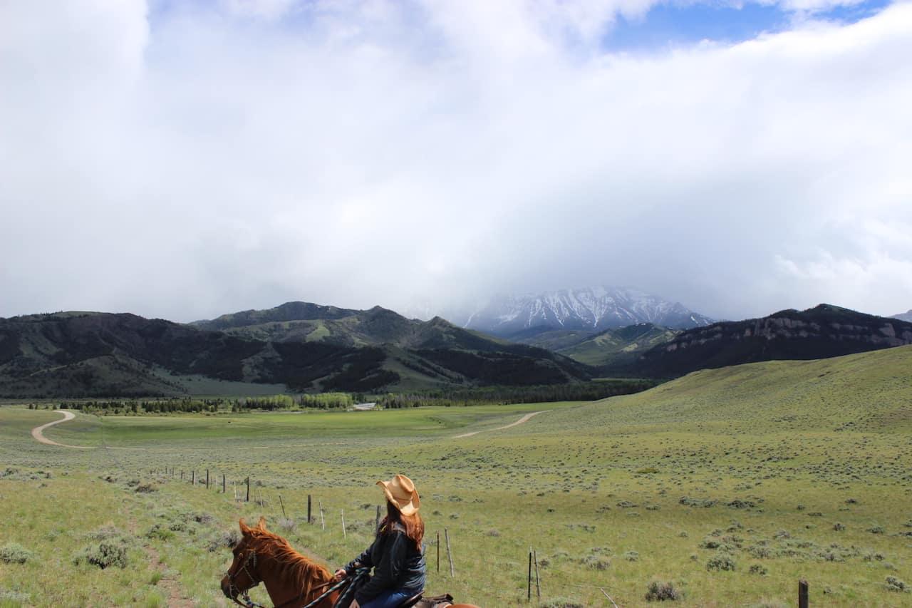 7D Ranch 2014 Steve Stewart
